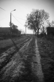 LM_Satmarel2019_26